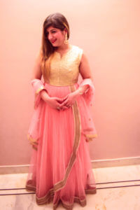 Indian Ethnic Gown